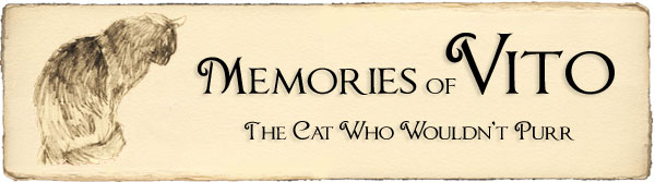Memories of Vito: The Cat Who Wouldn't Purr