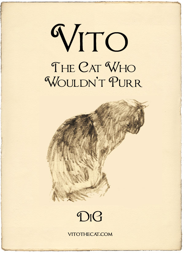Vito: The Cat Who Wouldn't Purr